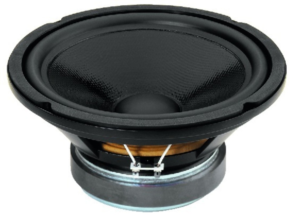 IGTEK - NUMBER ONE SPH-250CTC SUBWOOFER WOOFER 25CM  2X150 WATT 8+8 OHM TOP HI-FI HOME